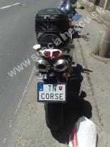 TNCORSE-TN-CORSE