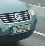 PDPAULI