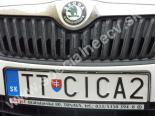 TTCICA2
