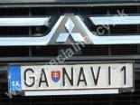 GANAVI1