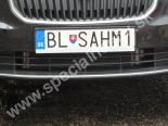 BLSAHM1