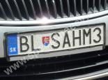 BLSAHM3