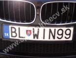 BLWIN99