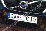 GASFC19