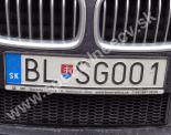 BLSGOO1
